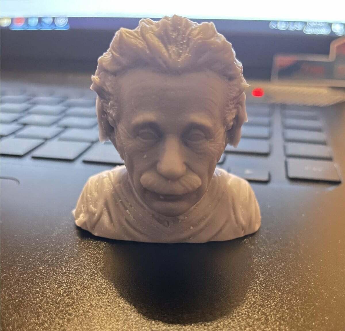 Einstein Bust 0.025mm Layer Height - 3D Printerly