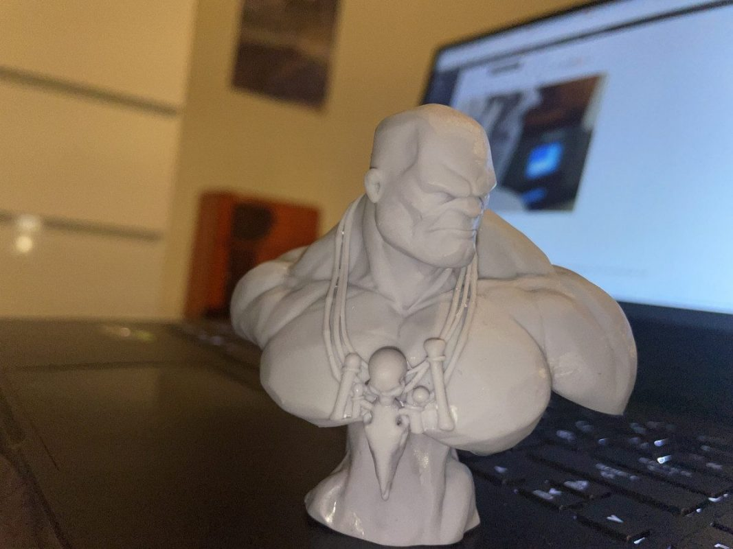 Voxelab Proxima 6.0 Review - Stone Giant Bust - 3D Printerly