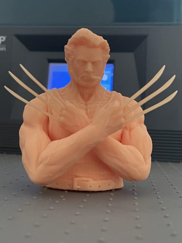 Anycubic Photon Ultra Review - Wolverine Test Print Success 2 - 3D Printerly
