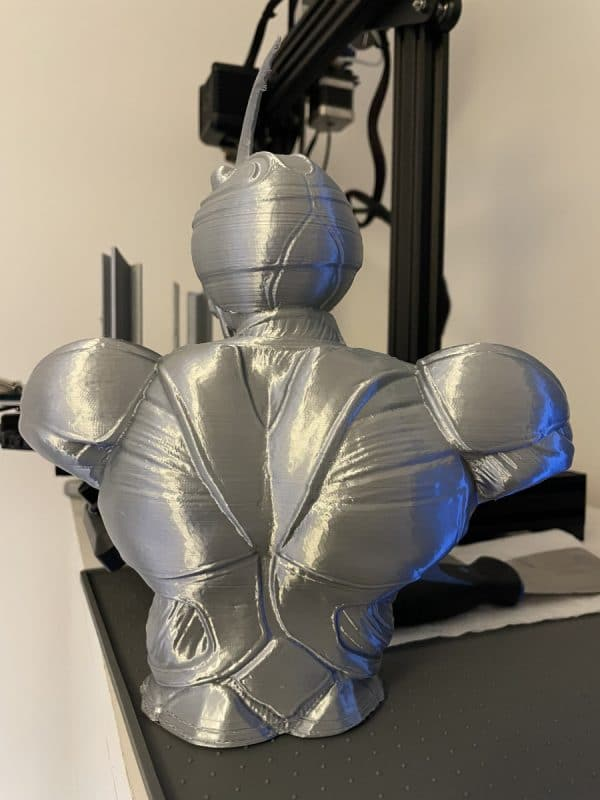 Voxelab Aquila X2 Review - Large Grey Guyver Print 4 - 3D Printerly